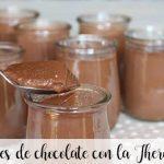 Yaourts au chocolat avec le Thermomix