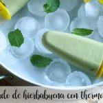 Crème glacée à la menthe poivrée au thermomix